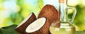 Óleo de coco aumenta o metabolismo?